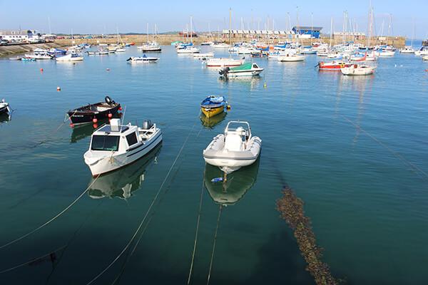 Blue Shark Snorkel St Ives