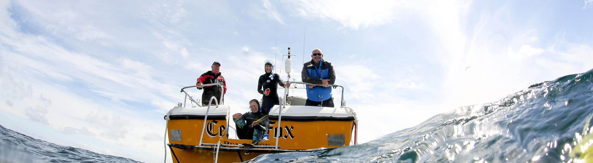blue shark snorkel boat 2000x550 - The Boat