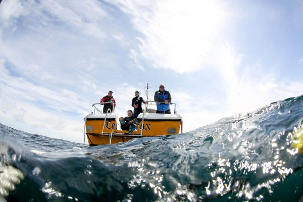 blue shark snorkel boat 600x400 - The Boat
