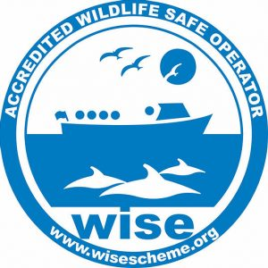 Wise logo 300x300 - Welcome to Blue Shark Snorkel